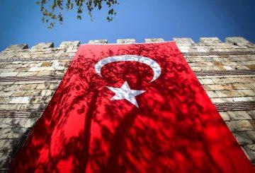 Employment Outlook: Turkey