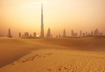 Navigating the UAE