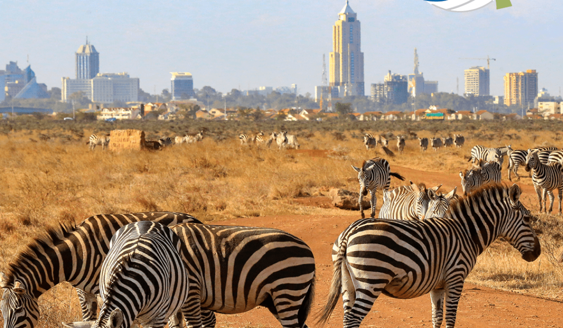 What You Need to Know Before You Go: Kenya