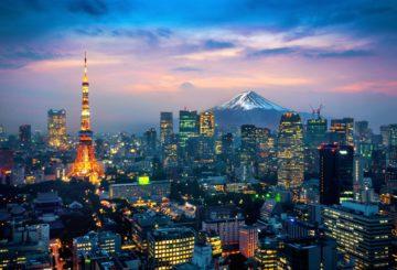 Tokyo's Job Market: At a Glance